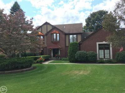 Shelby Twp Single Family Home For Sale: 13988 Golden Arrow Ct