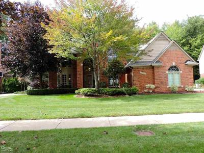 Sterling Heights Single Family Home For Sale: 43711 Trillium