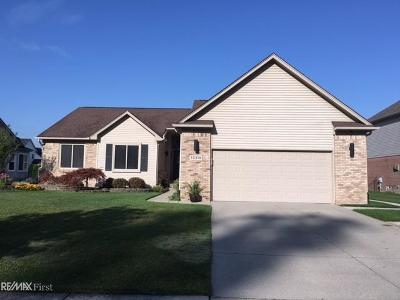 Chesterfield Single Family Home For Sale: 52319 Walnut