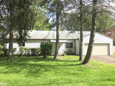 Harrison Twp Single Family Home For Sale: 26825 Campau Ln