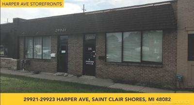 Commercial/Industrial For Sale: 29921-20023 Harper