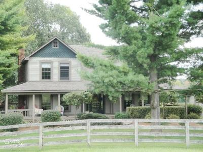 Lapeer Single Family Home For Sale: 5375 S Lake George Rd