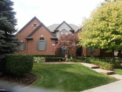 Shelby Twp Single Family Home For Sale: 11908 Cedarwood