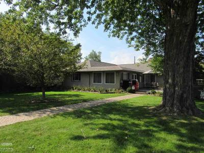 Harrison Twp Single Family Home For Sale: 29580 Old North River Rd.