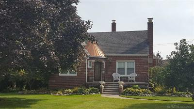 Harrison Twp Single Family Home For Sale: 28830 S River Rd