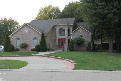 Romeo, Richmond Single Family Home For Sale: 68135 Lake Angela Drive