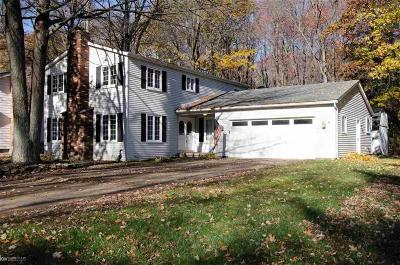 Fort Gratiot Single Family Home For Sale: 4206 Old Forge