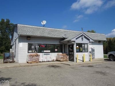 Commercial/Industrial For Sale: 8494 S River