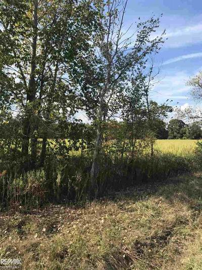Armada, Armada Twp Residential Lots & Land For Sale: Coon Creek