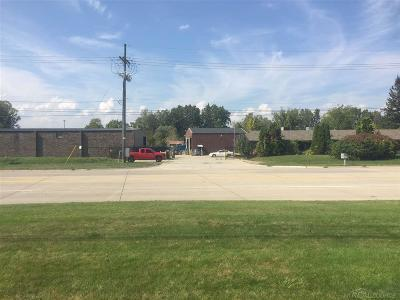 Commercial/Industrial For Sale: 53861 Gratiot
