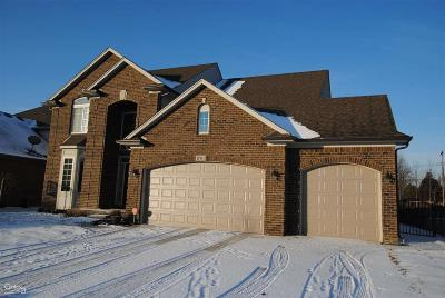 Macomb Single Family Home For Sale: 47101 Hidden Meadows