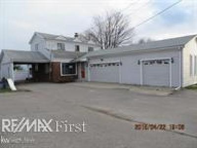 St. Clair Single Family Home For Sale: 10081 Dixie