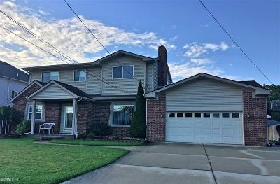 Saint Clair Shores Single Family Home For Sale: 22544 Lange