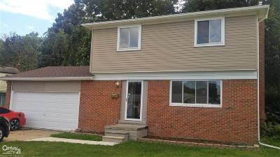 Mount Clemens Single Family Home For Sale: 11 Inches