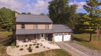 Saint Clair Single Family Home For Sale: 4956 Bowman