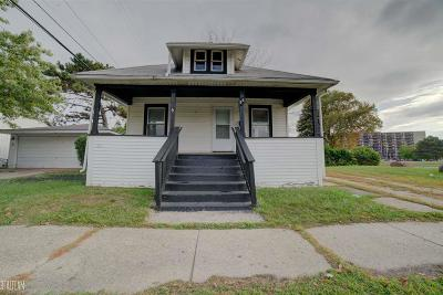 Mount Clemens Single Family Home For Sale: 56 Park