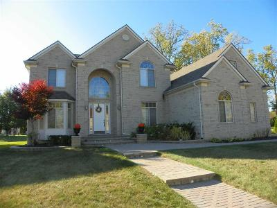 Troy Single Family Home For Sale: 5885 Colleen Dr