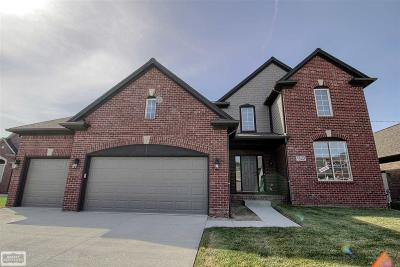 Macomb Single Family Home For Sale: 22157 Richmond Court