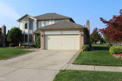 Macomb Single Family Home For Sale: 15759 Lamont Dr.
