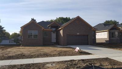 Macomb Single Family Home For Sale: 23142 Merlene