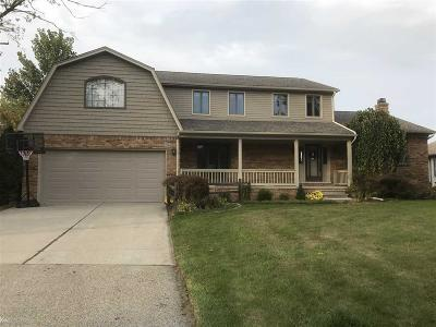 Harrison Twp Single Family Home For Sale: 28015 E Duluth