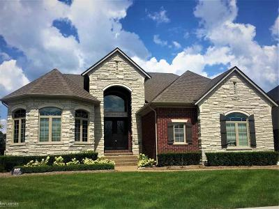 Shelby Twp Single Family Home For Sale: 8837 Softtail Lane