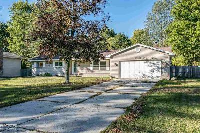 Fort Gratiot Single Family Home For Sale: 3216 N Shoreview