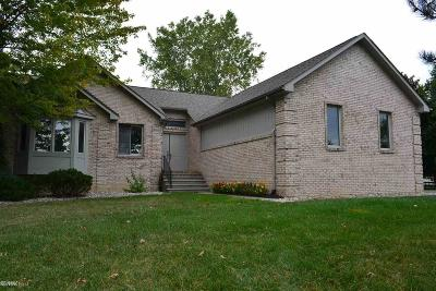 Shelby Twp Single Family Home For Sale: 13115 22 Mile