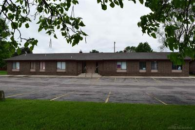 Shelby Twp Commercial/Industrial For Sale: 4741 24 Mile