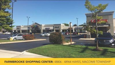 Macomb Twp Commercial Lease For Lease: 48898 Hayes