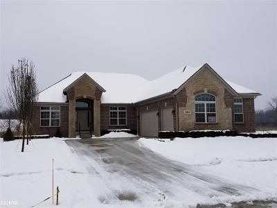Shelby MI Single Family Home For Sale: $489,900