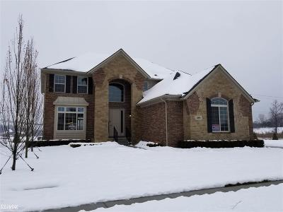 Shelby MI Single Family Home For Sale: $509,900