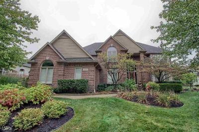 Shelby Twp Single Family Home For Sale: 14252 Provim Forest