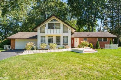 Sterling Heights Single Family Home For Sale: 42602 Mayhew