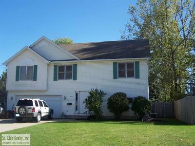 Saint Clair Single Family Home For Sale: 540 N 4th