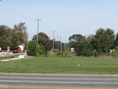 Sterling Heights Residential Lots & Land For Sale: 33100 Maple Lane