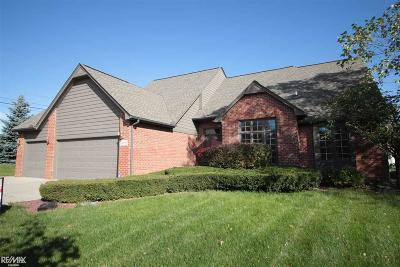 Shelby Twp Single Family Home For Sale: 46952 Piper