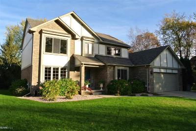 Troy Single Family Home For Sale: 6204 Seminole