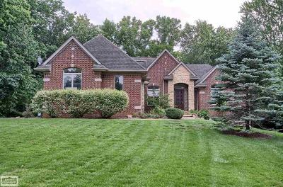 Franklin Single Family Home For Sale: 25111 W 13 Mile Road