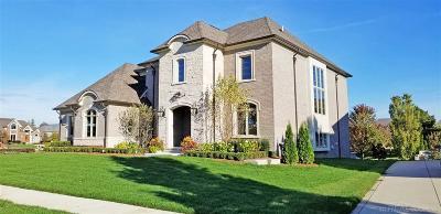 Macomb Single Family Home For Sale: 54238 Carrington Dr.