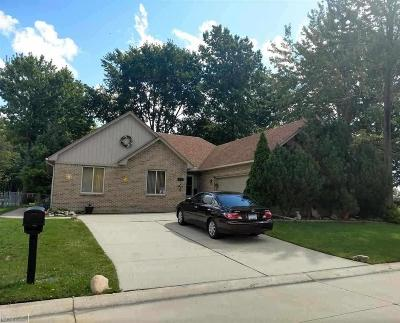 Warren Single Family Home For Sale: 30060 Mirage Ct.