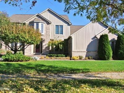 Shelby Twp Single Family Home For Sale: 48416 Estera