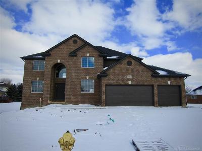 Macomb Single Family Home For Sale: 50162 Wanda