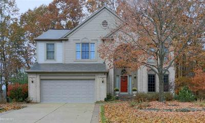Lake Orion Single Family Home For Sale: 2628 Aubrey Dr