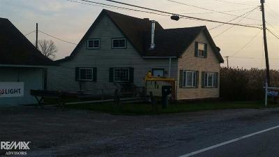 Harsens Island Single Family Home For Sale: 3847 Green