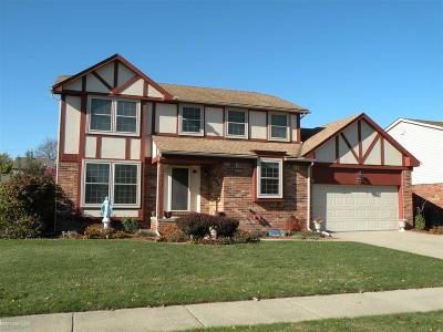 Sterling Heights Single Family Home For Sale: 13861 Diversion Dr