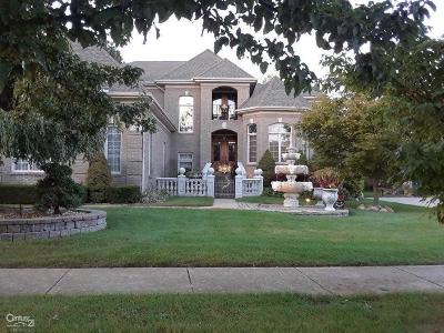 Shelby Twp Single Family Home For Sale: 13403 Partridge Run