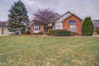 Shelby Twp Single Family Home For Sale: 53839 Buckingham