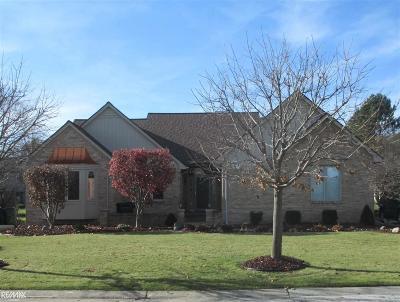 Macomb Single Family Home For Sale: 53797 Buckingham Lane