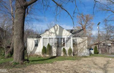Shelby Twp Single Family Home For Sale: 7111 24 Mile